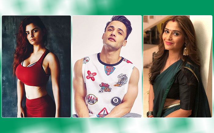 Bigg Boss 13 Final Contestant List These Celebs To Be Seen