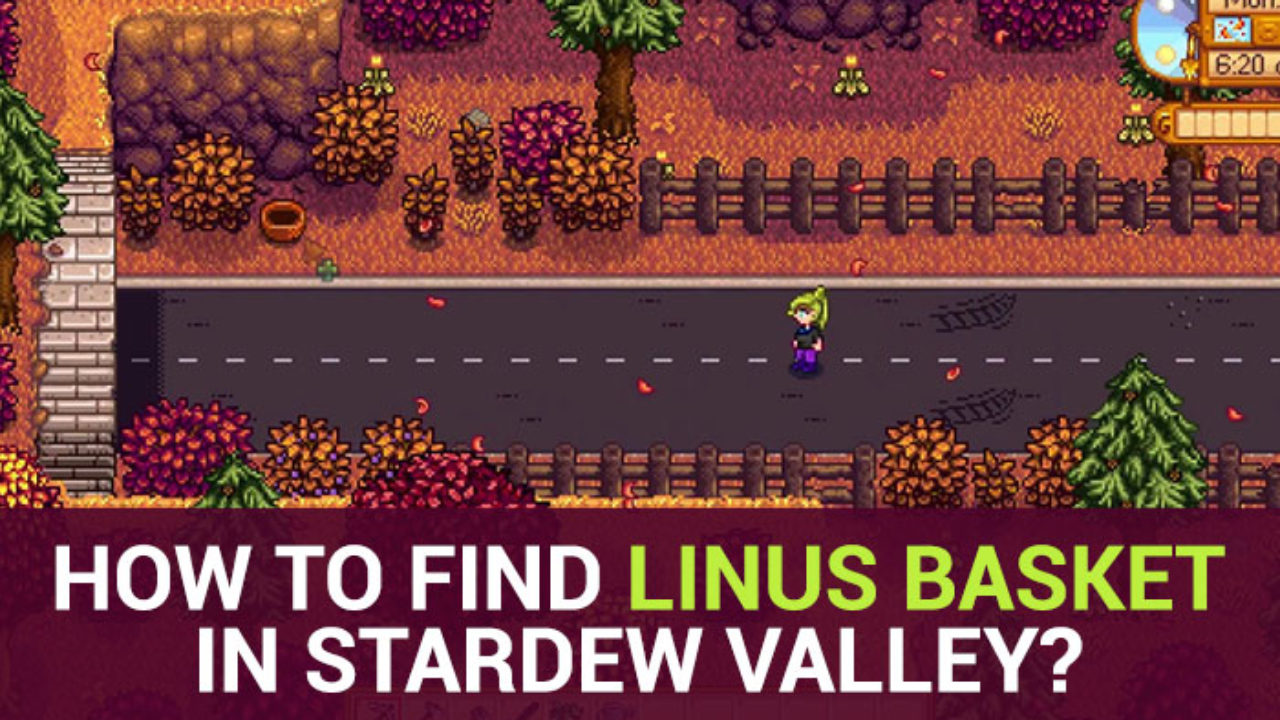 Stardew Valley Guide How Where To Find Linus Basket In Stardew Valley The linus location for the blueberry basket. find linus basket in stardew valley